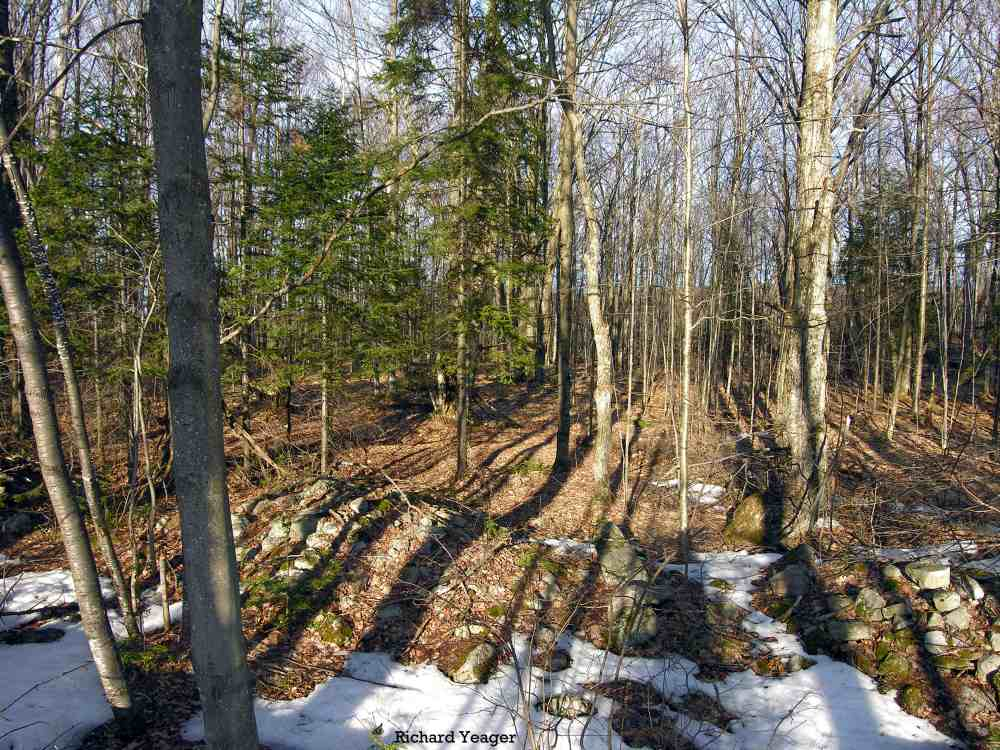 27+Acres on Bradley Pond Rd, Ellenburg