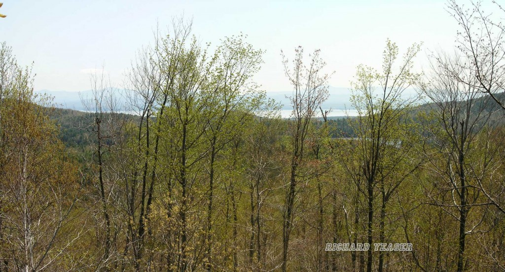 115 Acres of Land For Sale in Willsboro, NY