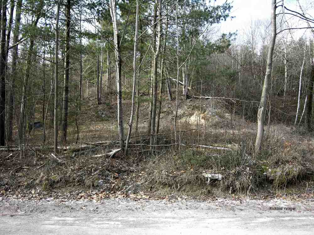 Land For Sale in Willsboro